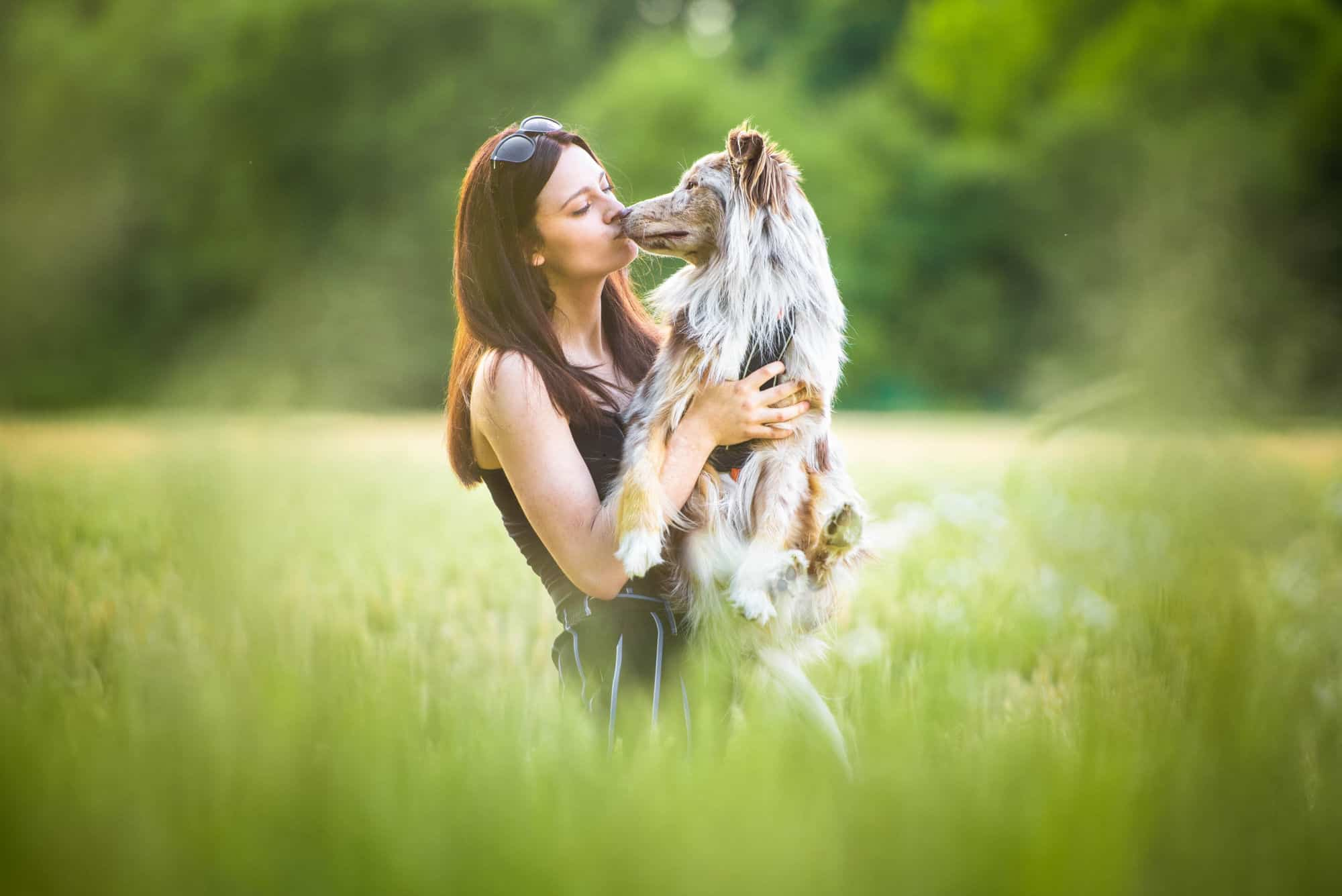 9. lekce - Procházení kolem psů zaplotem