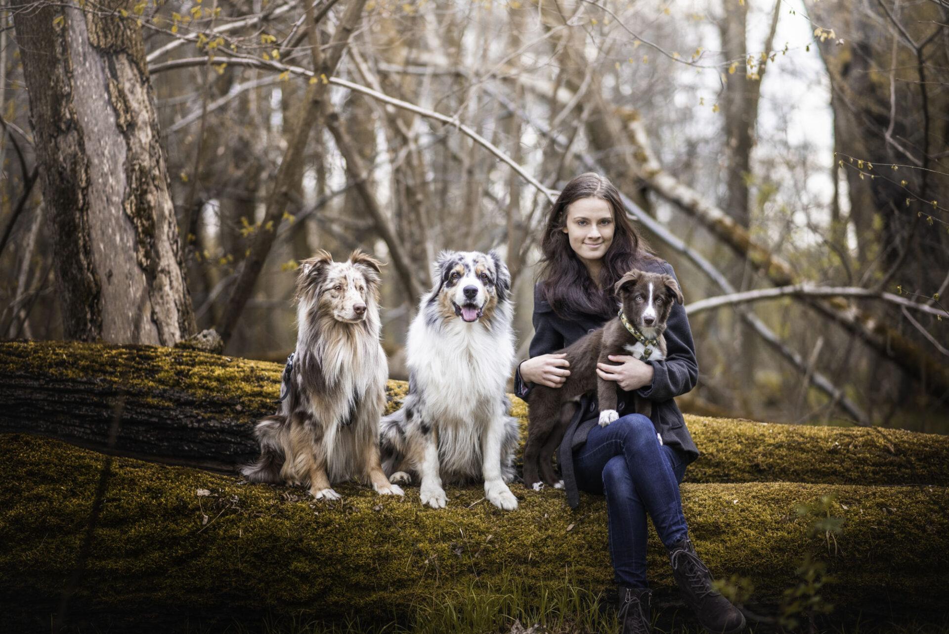 5. lekce - Socializace psa - Teoretická část