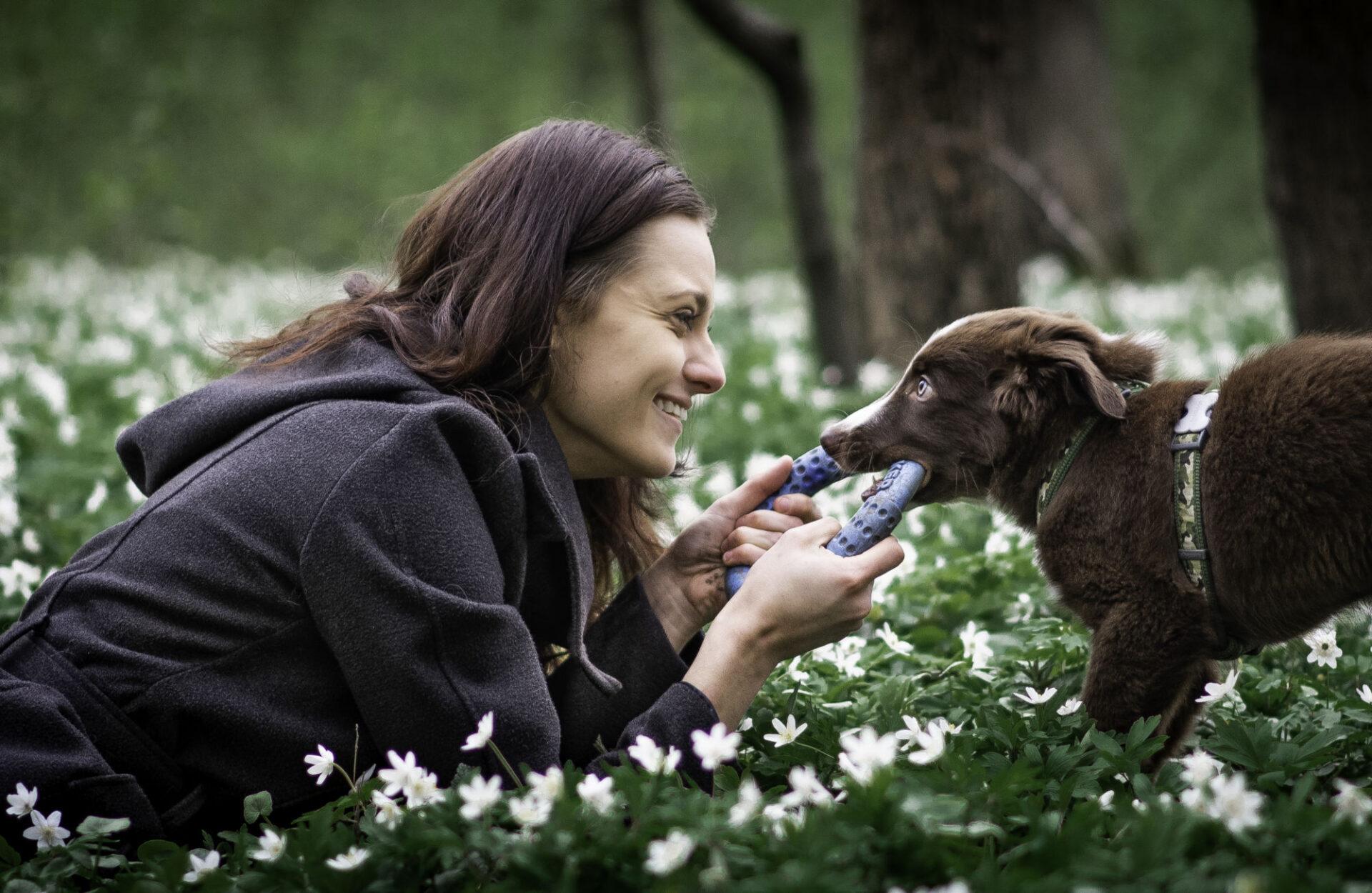 4. lekce - Motivace psa